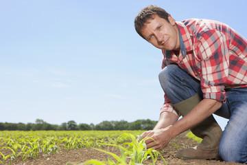 Portrait of farmer tending to corn seedlings in field