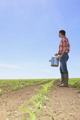 Farmer with watering can in field of corn seedlings