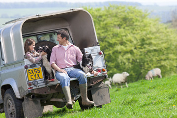 Shepherd and daughter with dogs on tailgate of truck in field