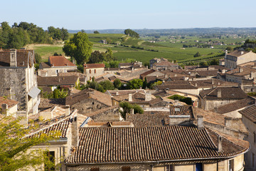 Traditional rooftops of houses in France