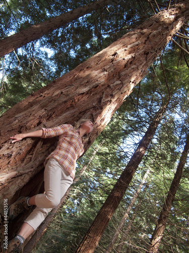 Woman leaning on large redwood tree