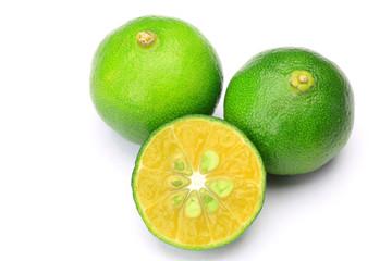 citrus depressa