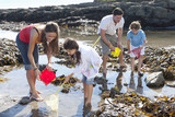 Family with nets and pails fishing in tide pool