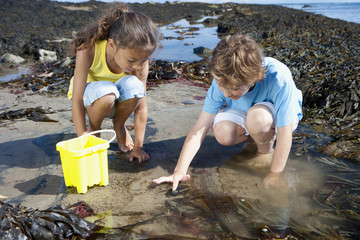 Boy and girl fishing in tide pool