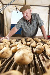 Smiling farmer inspecting potatoes on conveyor belt