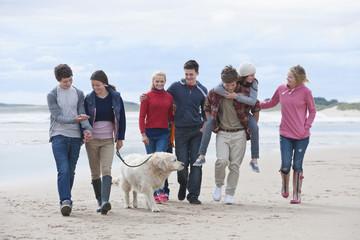 Teenage friends and dog walking on beach