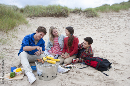 Teenage couples enjoying barbecue on beach