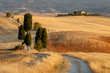 Tuscan countryside at sunset, near Pienza, Tuscany, Italy
