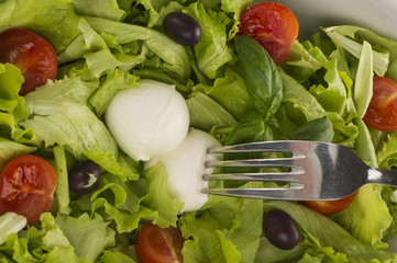 Fresh salad with tomatoes and mozzarella