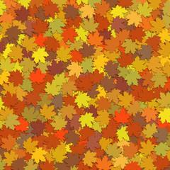 Tapis de feuilles aux couleurs de l'automne