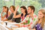 Fototapety High-school student raising her hand in class