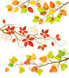 Collection of autumn leaves.Vector illustration