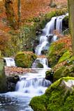 Fototapete Gebirgsbach - Wald - Wasserfall / Schnellen / Geysir