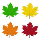 Feuilles d'érable couleurs quatre saisons