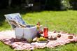 Leinwandbild Motiv Perfect food in the garden. picnic