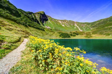 Gebirgsweg am See