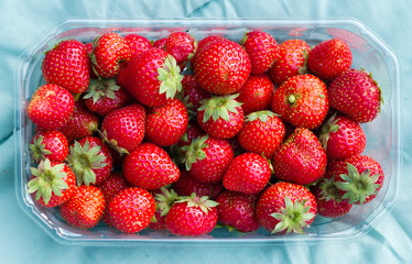 Eco grown Strawberries in plastic basket