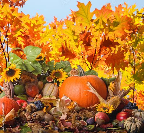 Erntedankfest: Früchte, Sonnenblumen, Herbstlaub