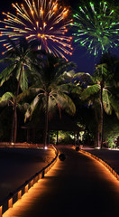 fireworks over the tropical island..