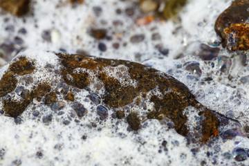 Stein am Stein-Strand mit Meeresschaum - Makro