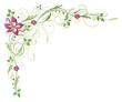 Ranke, flora, Blume, Blüte, border, frame, grün, rosa