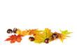 Unten liegende Herbstblätter und Kastanien