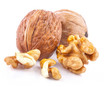 Walnut and a Kernel isolated on white background