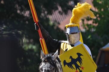 Ritter vor dem Tjost