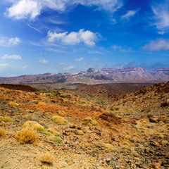 Canary islands in Tenerife Teide National Park