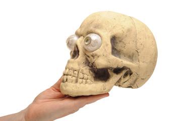 Hand holding halloween skull