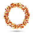 Circle from Autumn Leaves isolated on white background