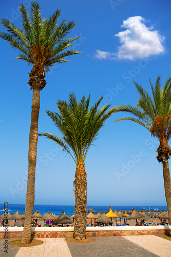 Adeje coast Las americas beach in south Tenerife