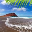 Beach Playa de la Tejita in Tenerife