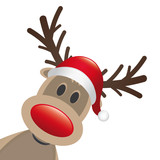 Fototapety rudolph reindeer red nose and hat