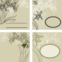 Background with frames - orchid flowers