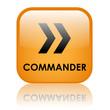 """Bouton Web """"COMMANDER"""" (ajouter au panier commerce électronique)"""