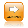 """CONTINUE"" Web Button (click here submit next confirm validate)"