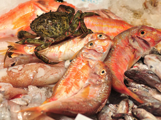 fresh crab and fishes on ice
