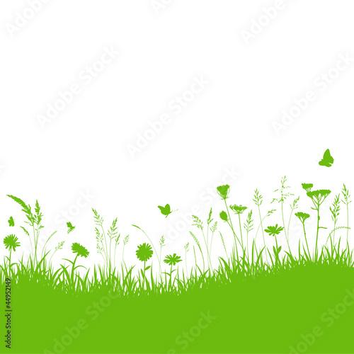 Vektor Gräser Wiese Grün