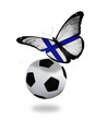 Concept - butterfly with Finnish flag flying near the ball, like