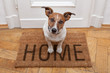canvas print picture - dog welcome home entrance