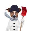 canvas print picture - winter dog shovel snow