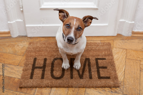 canvas print picture dog welcome home entrance