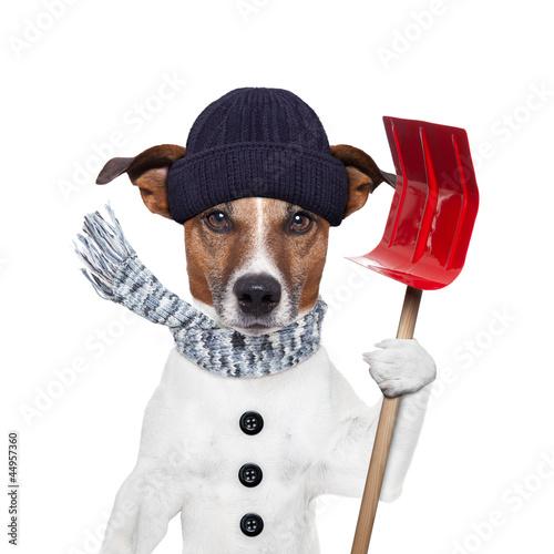canvas print picture winter dog shovel snow