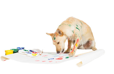 Dog painting with its paw