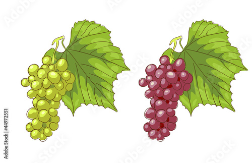White and pink grapes.