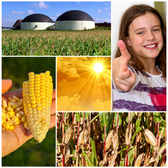 Bioenergie ist super !
