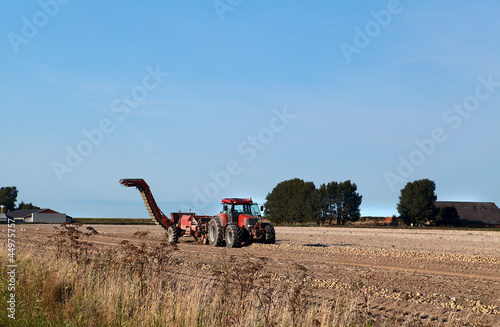 tractor on potato field