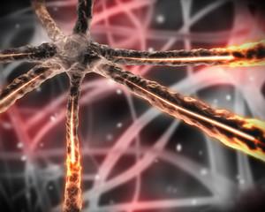 Orange microscopic nervous system