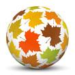 Kugel, Herbst, Oktober, Blatt, Leaf, Ball, Sphere, Autumn, 3D